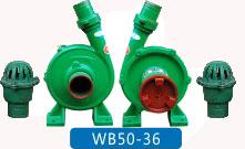 WB50-36