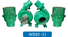 WB80-31