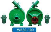 WB50-100