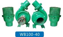 WB100-40